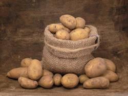 Kartoffelspezialitäten
